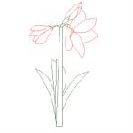 Flores em vista dwg