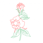 Rosas, flores em dwg