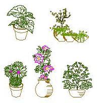 Flower_Pots